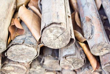 pile of wood Stock Photo - 17860822
