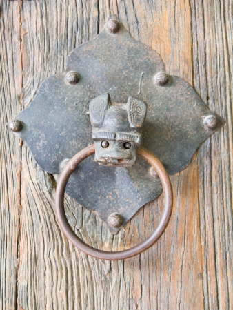Bat head, brass door knocker