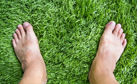 synthetic: standing on Green grass pattern