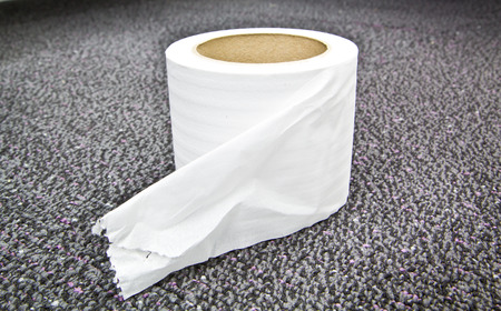 Closeup roll of white toilet paper Stock Photo - 22566028