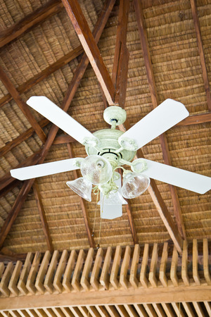 Fan and Lighing on top