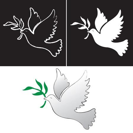 paloma blanca: Un vector de vuelo libre paloma blanca símbolo