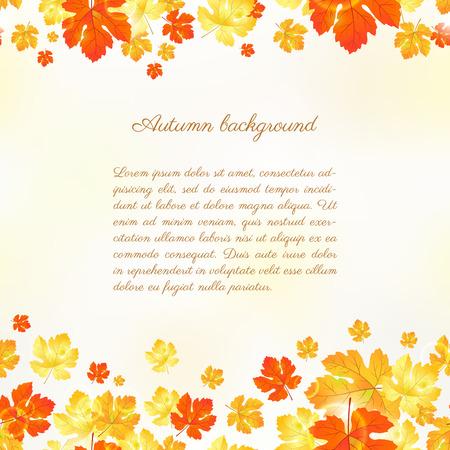 Esdoorn herfst bladeren achtergrond