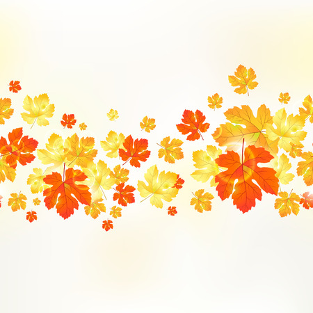 Autumn seamless ornament maple leaves   Vector