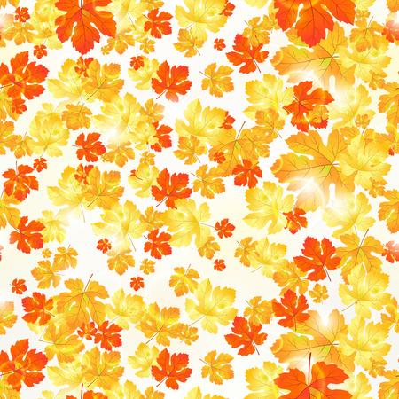 borders plants: Autumn seamless ornament maple leaves background