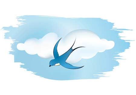 beautiful swallow flying to sky  Vector