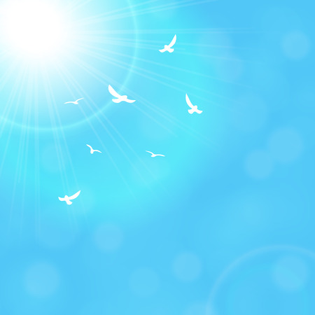 high angle view: Sun and seagulls with lenses flare. Illustration