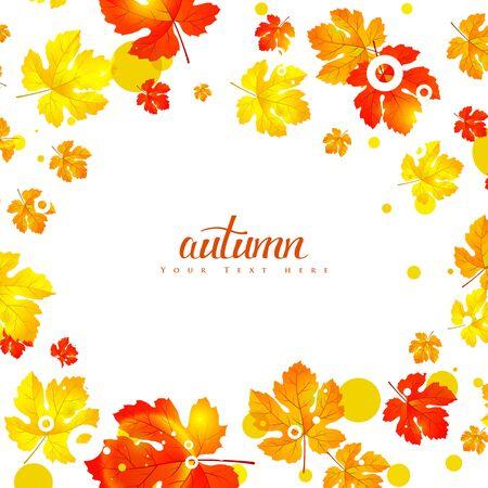 autumn background: Maple autumn leaves background.