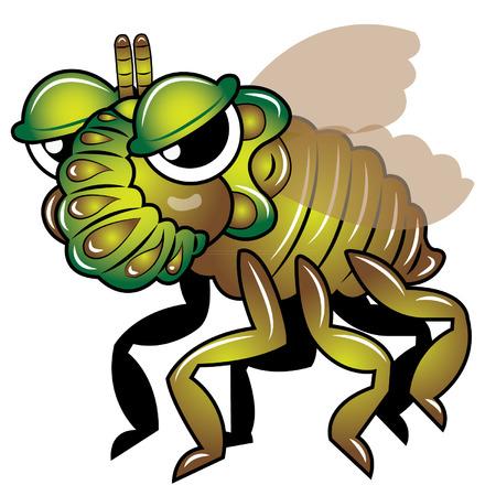 cicada: Cicada insect vector Illustration