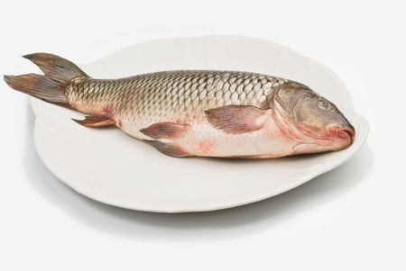Fresh freshwater fish carp on a white plate Stok Fotoğraf