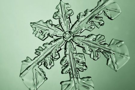 larger: Larger image in the microscope frozen snowflake Stock Photo