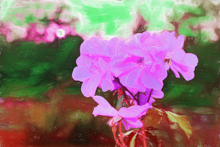 pictorial art: Artwork painting wallpaper. Pictorial illustration- digital photo conversion techniques. Flower colors- art modeling creative space for interior decoration. Compositional elements are used for a better perception of: abstract lines, blur, color tone, text Stock Photo
