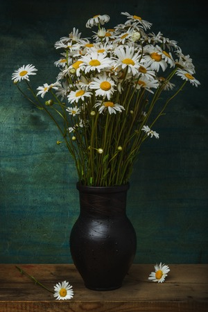 Still life- artwork picture of bouquet flowers daisies