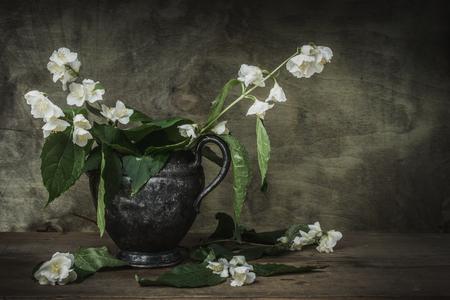 antique vase: Still-life jasmine sprig of flowers in a metal vase.