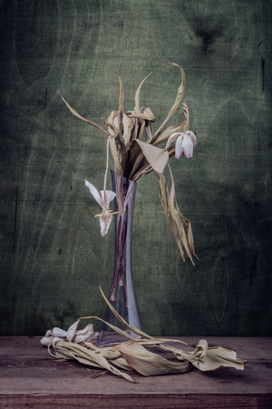 Still life. Dry tulips in transparent glass vase. Pressed flowers- abstract background of wood.