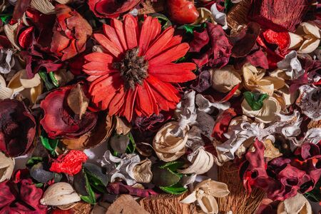 Top view- flat still life. Dry field flowers- plant table. Reklamní fotografie - 125332910