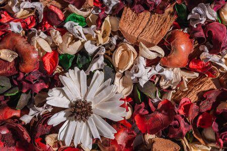 Top view- flat still life. Dry field flowers- plant table. Reklamní fotografie - 125333319