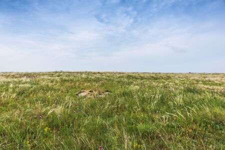 Sights of Crimea - lush vegetation, steppe zone in the spring. Landscape park- Kerch peninsula Stock Photo