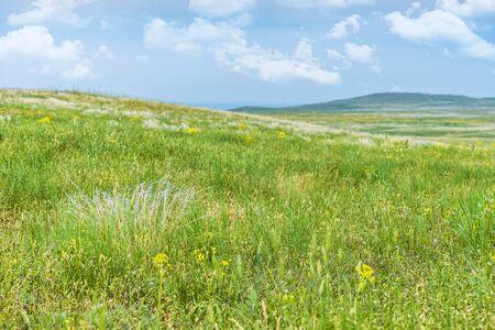 Sights of Crimea - lush vegetation, steppe zone in the spring. Landscape park- Kerch peninsula Stock fotó