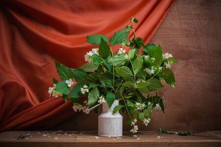Still life jasmine. Spring- blossom season. Background- cloth drapery. Fine art- decoration concept Reklamní fotografie
