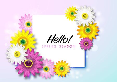 Spring Background with Colorful Daisy Flower Blossom Design Vector