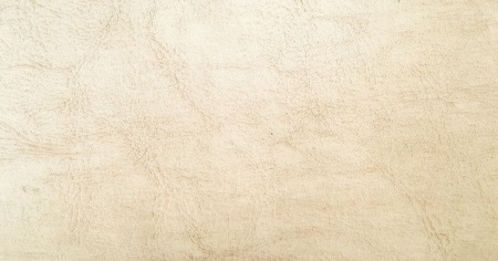 White leather texture background. Leather textured background with side light
