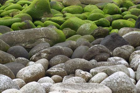 galizia: Massi di granito con muschio sulla costa dell'Atlantico in Galizia, Spagna