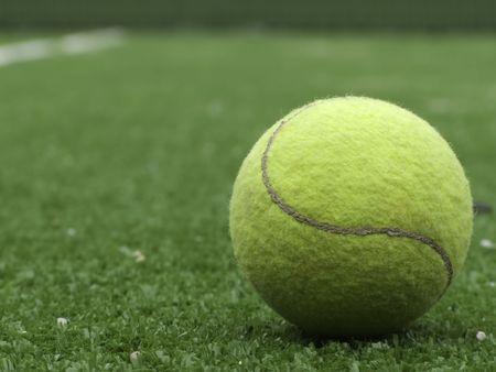 pasto sintetico: Pelota de tenis sobre hierba sint�tica de la pista de padel.