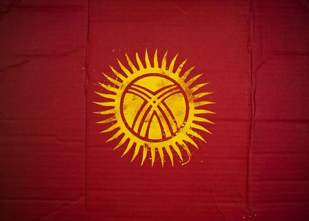 Flag of Kyrgyzstan made with corrugated cardboard Stock Photo