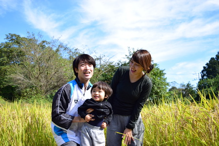 rijstoogst met jong gezin