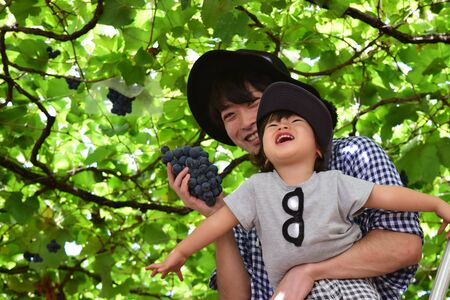 father and his son is picking grape