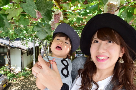Jonge moeder en haar kind dat druiven eet Stockfoto