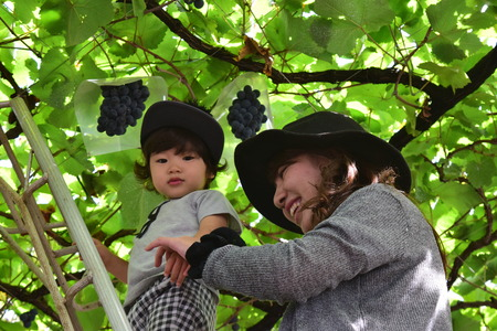 Young mother and her child eating grapes