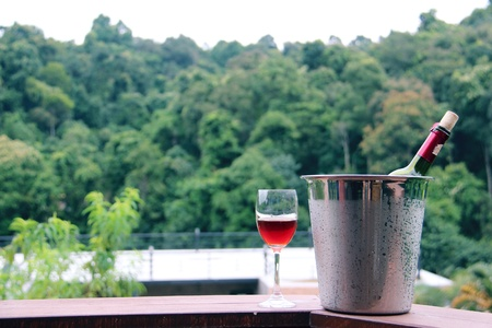 glass of red wine with forest on the top of mountain and sky background