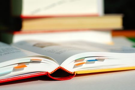 A reading book and labelled with bookmarks photo