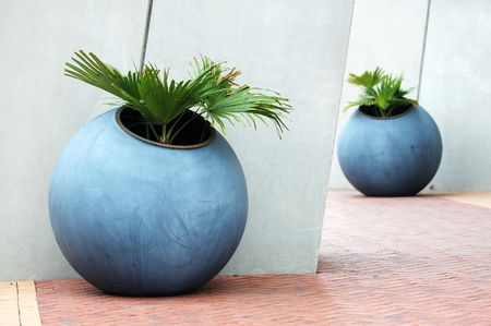 feature: The round plant pots used for feature environment