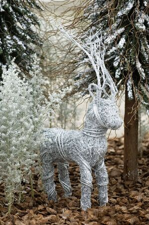 The Christmas ornaments of deer in forest photo