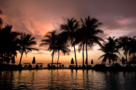 laguna: Evening in tropical hotel, silhouette of palm tree and swimming pool Stock Photo