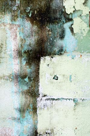 mildew: The background of grunge wall with mildew