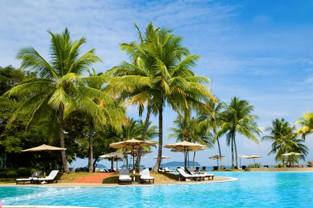 Morning in tropical hotel, with palm tree and swimming pool