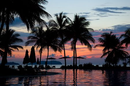 Evening in tropical hotel, silhouette of palm tree and swimming pool Stock Photo