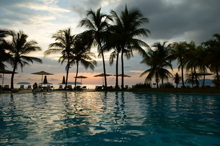 Evening in tropical hotel, silhouette of palm tree and swimming pool photo
