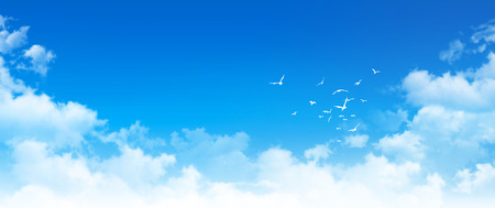 Panoramic cloudscape. High resolution blue sky background. White clouds and birds composition in daylight Standard-Bild