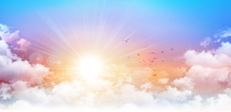 Panoramic sunrise. High resolution morning sky background. Rising sun and birds breaking through white clouds