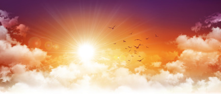 beautiful sunshine: Panoramic sunset. High resolution evening sky background. Setting sun and birds breaking through white clouds Stock Photo