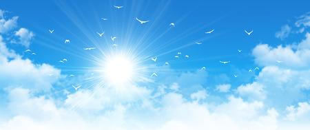 흐린 푸른 하늘에서 햇빛이 앞의 흰 새의 비행