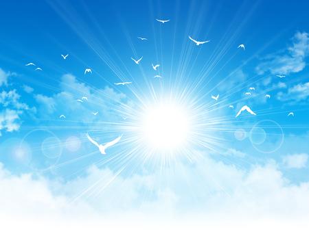 luz do sol: Branco voo aves na frente da luz do sol em um céu azul nebuloso Imagens