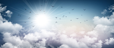 Stormy sky background, sunlight through white clouds and birds flying away Stock Photo