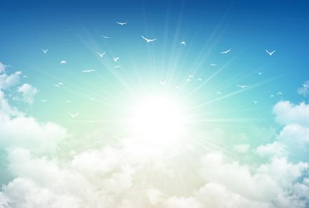朝空の背景、白い雲と離れて飛んで無料鳥の木漏れ日 写真素材