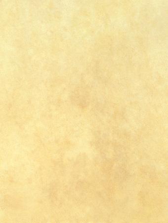 Old paper textured background. Blank piece of ancient parchment. Reklamní fotografie - 119793045
